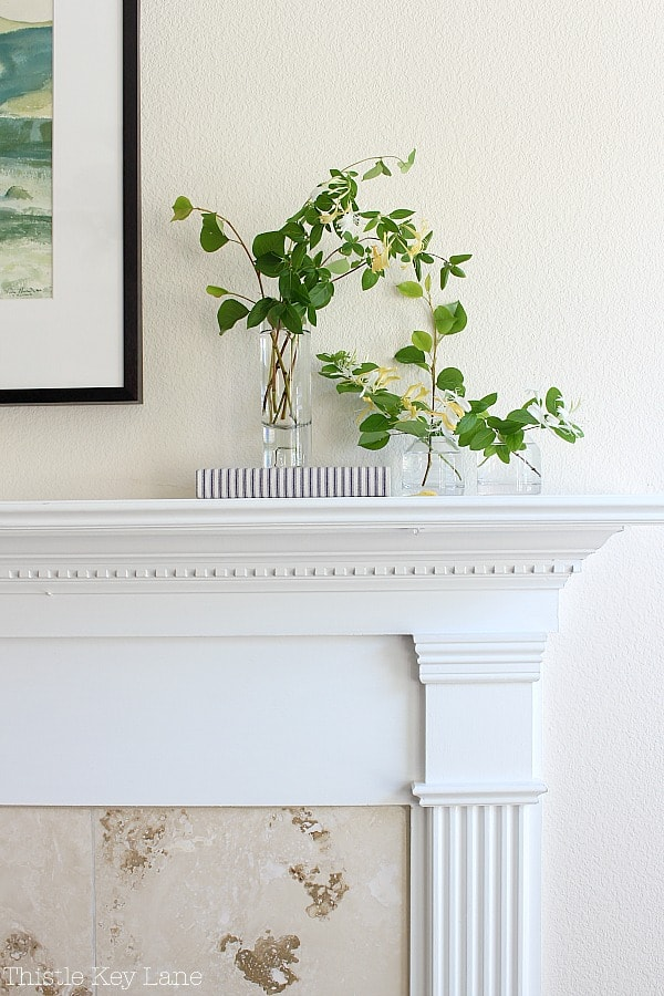 Honeysuckle in glass vases on a mantel.
