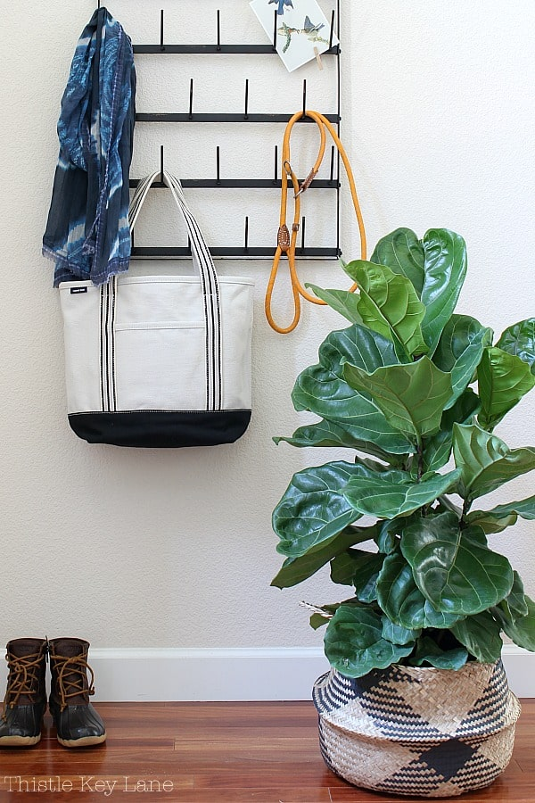 Ideas for decorating with plants in the entryway.