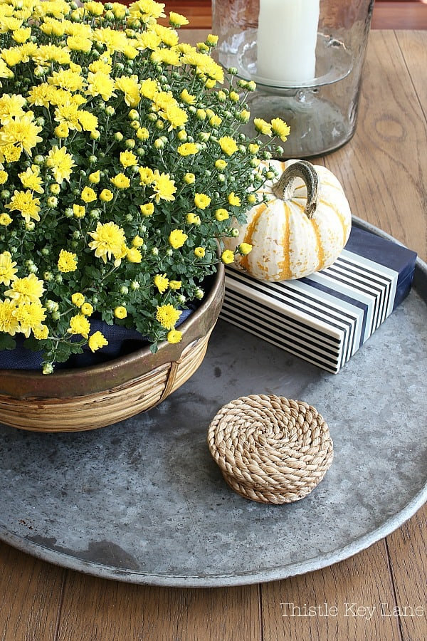 Yellow mums and a tiger pumpkin on a metal tray.