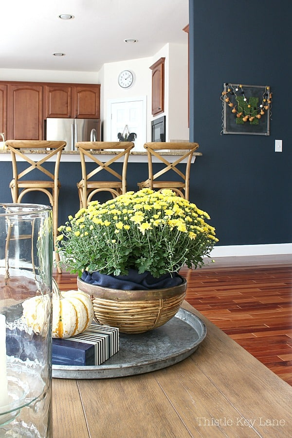 Fall Decorating With Mums And Pumpkins with a navy wall background.