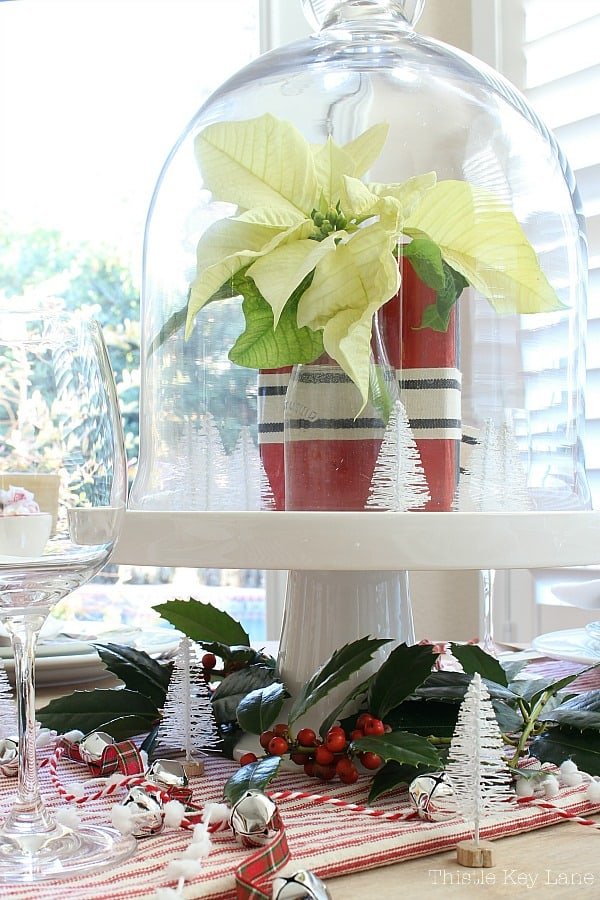 Vintage Ticking And Plaid Holiday Tablescape with a poinsettia under a cloche.