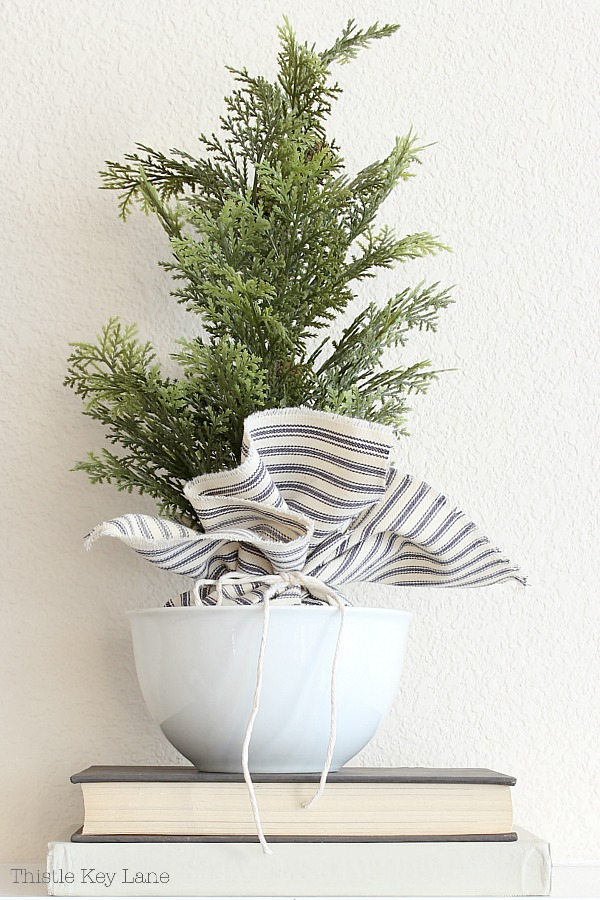 Evergreen topiary with fabric wrapped base in a white bowl.