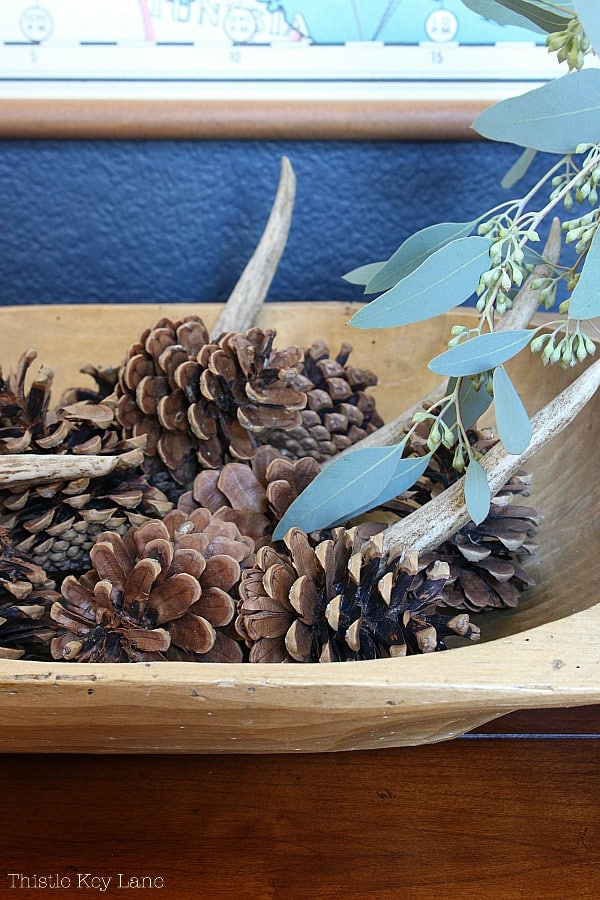 View of dough bowl with pine cones and antler.