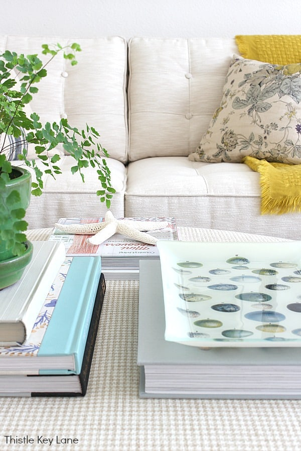 Spring Decorating Ideas For An Ottoman - using books with plant on top.
