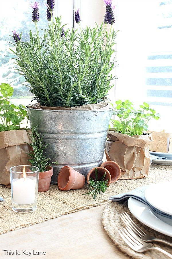 Garden Tablescape With Herbs - lavender, cilantro, thyme and rosemary.
