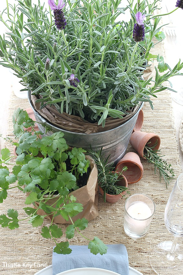 Garden Tablescape With Herbs - centerpiece.