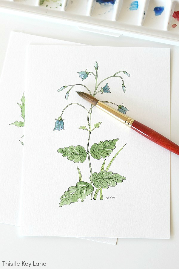 Simple Botanical Watercolor - Bluebells