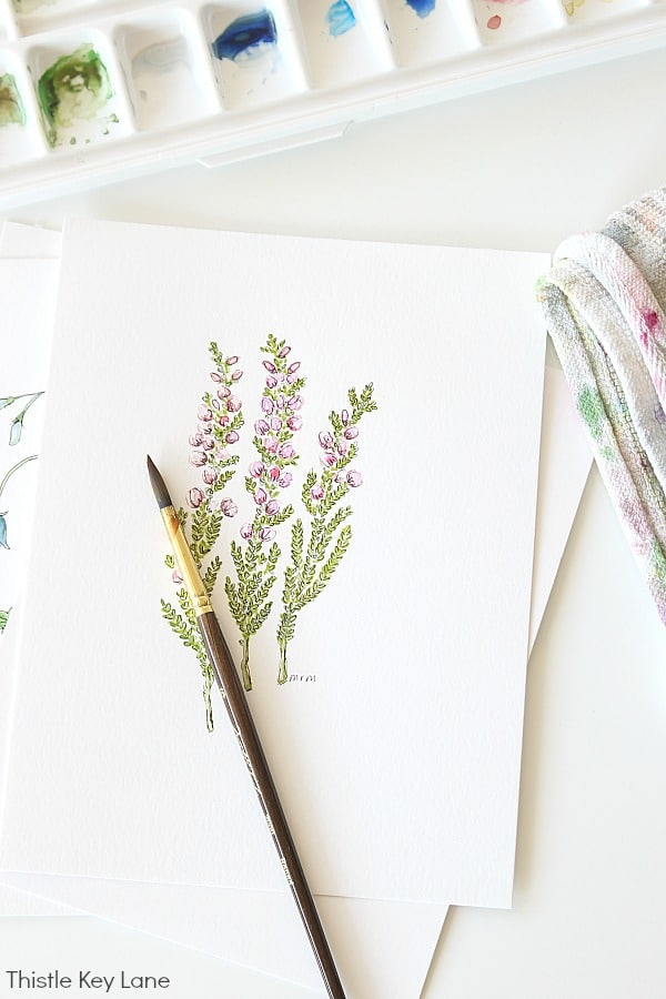 Simple Botanical Watercolor - Heather