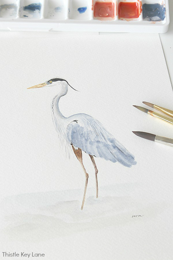 Heron Watercolor facing right.