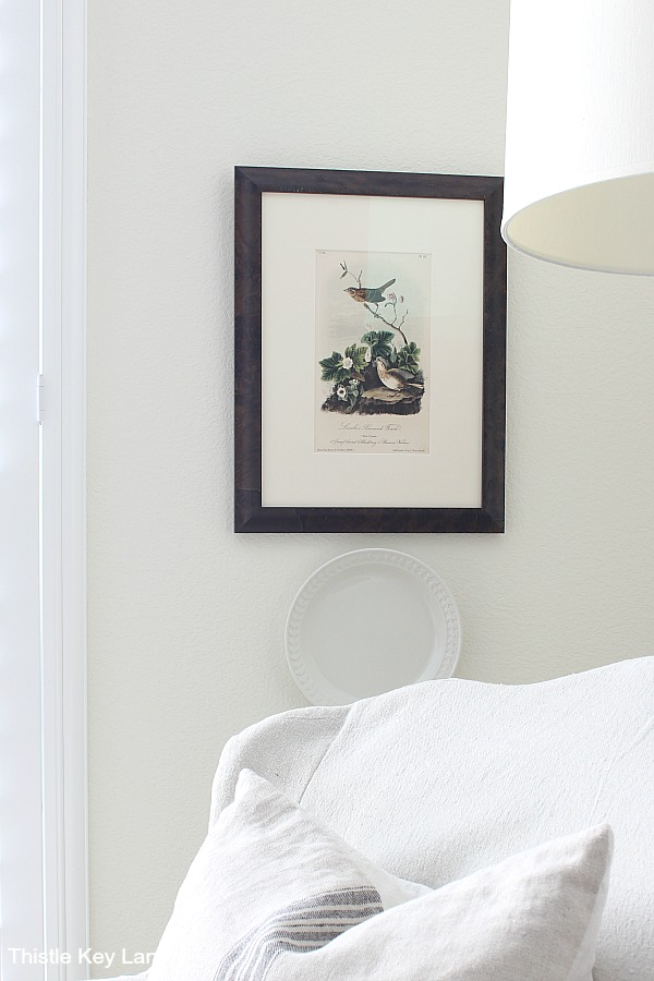 Framed bird print and a white plate hanging behind a chair.