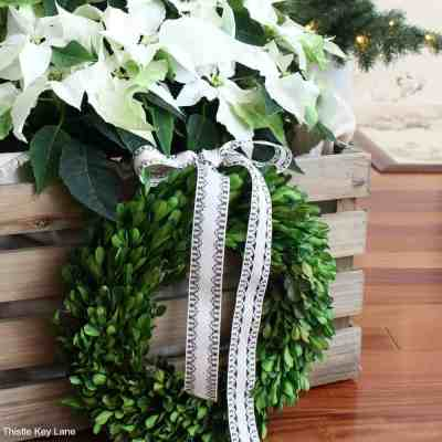 How To Decorate With Poinsettias In Crates