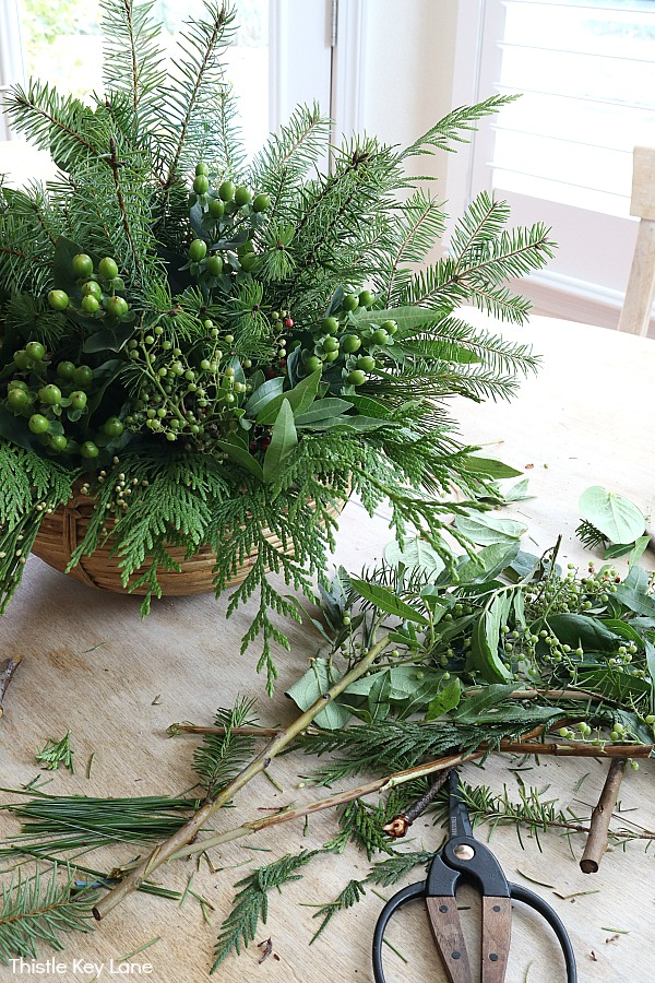 Scissors and clippings for evergreen arrangement.