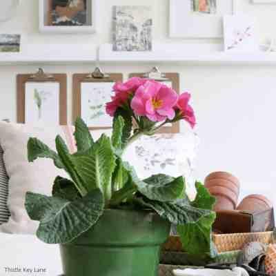 Winter Botanical Inspired Vignette