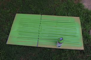 Spray paint bamboo outside