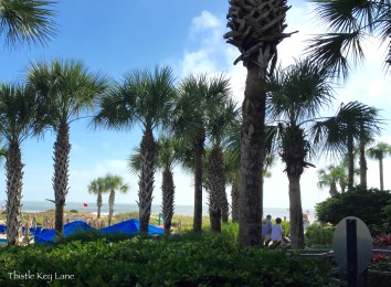 Ocean view from the patio of the Ritz-Carlton Amelia Island