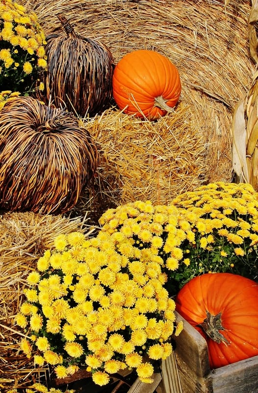 fall-decorating-ideas-for-outside