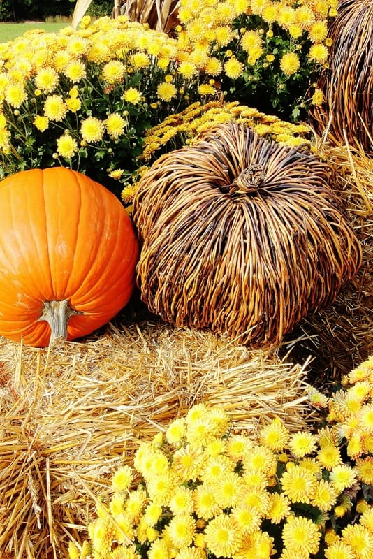 fall-decorating-ideas-with-pumpkins