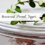 Boxwood Tag