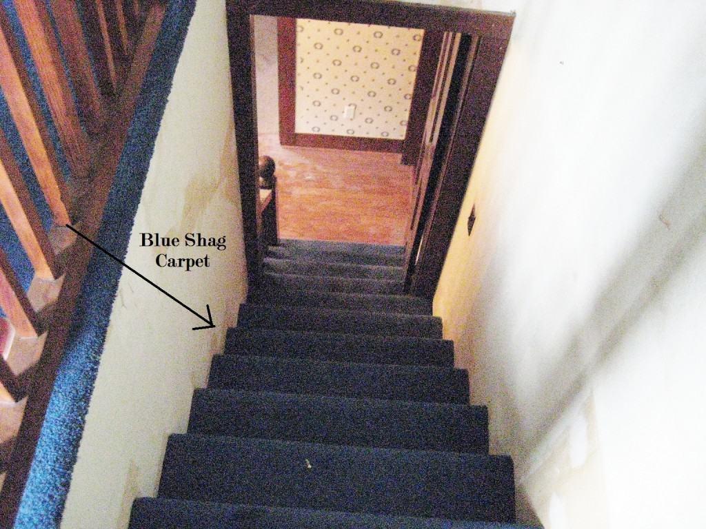 Diy Indoor Outdoor Stair Runner Thistlewood Farm | Indoor Outdoor Stair Runner | Antelope | Contemporary | Dash | Classic | Herringbone