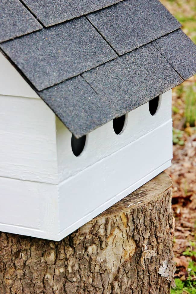 birdhouse project