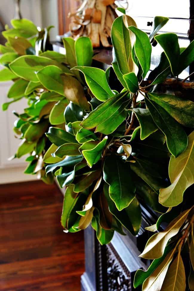Make your own gorgeous magnolia garland