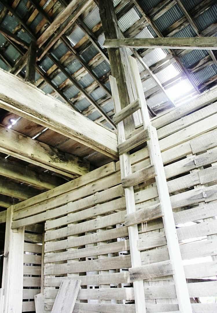 Old Barn Ladder