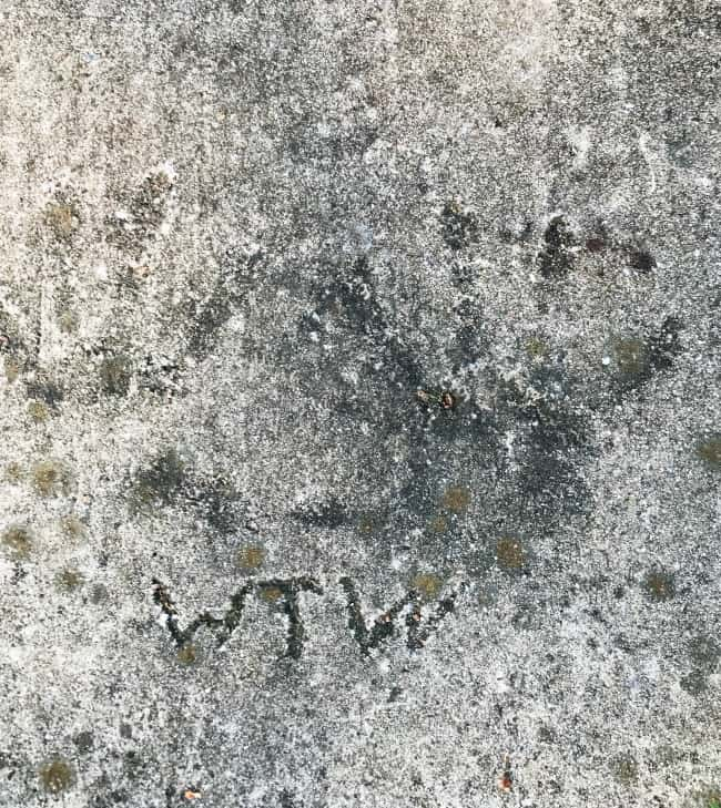 Handprints in the driveway