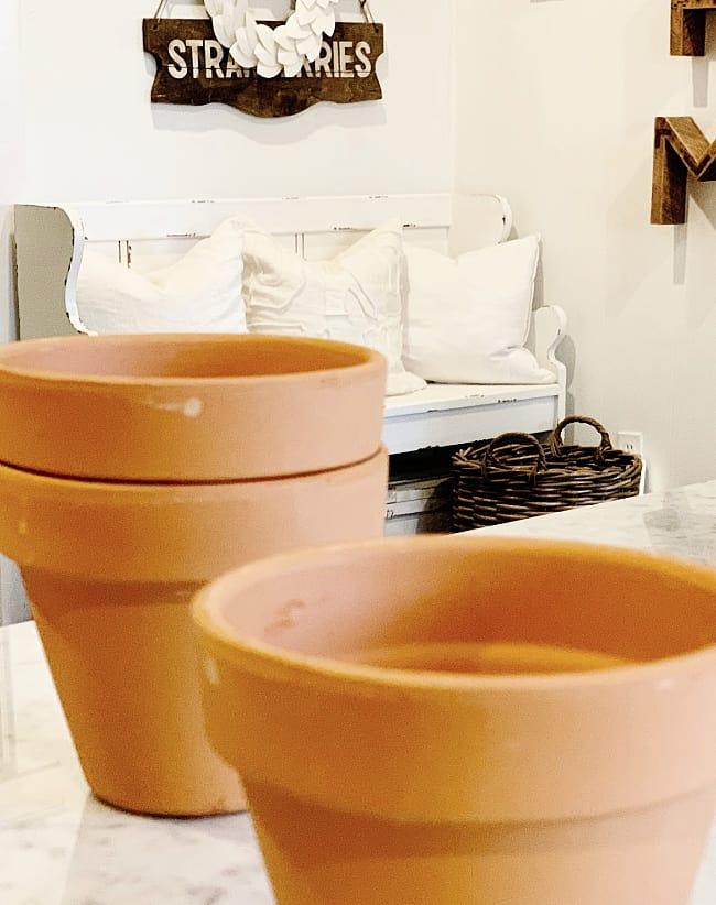 Spring Craft DIY Flower Pots for Flowers