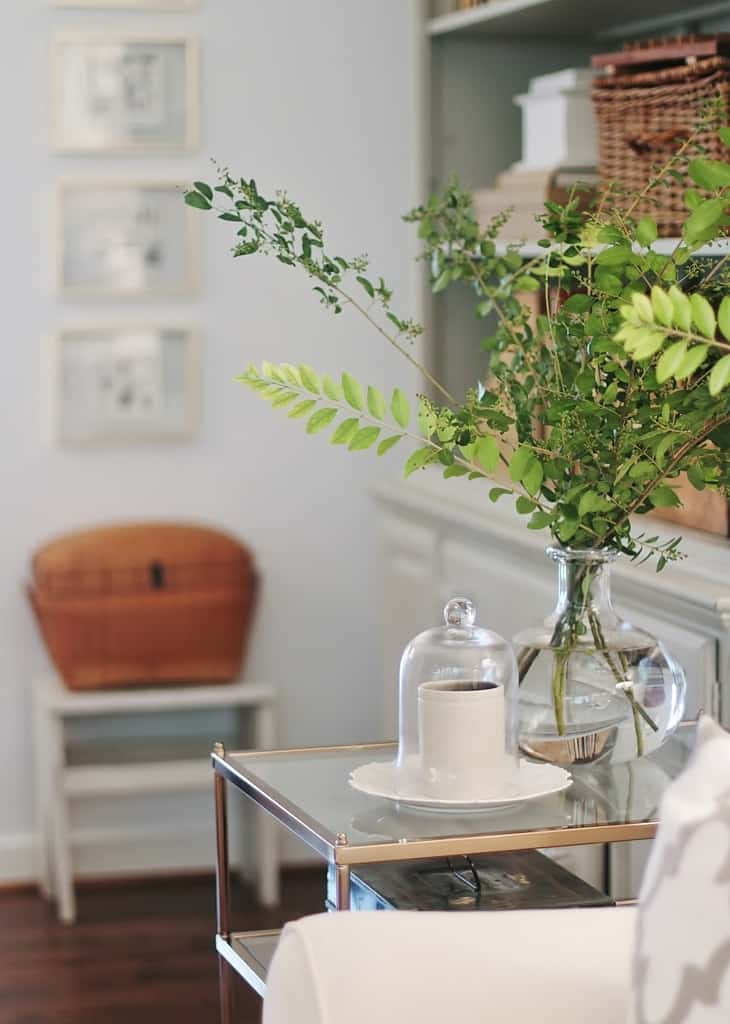 a plant on a small table
