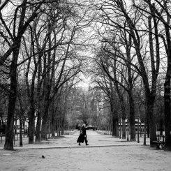 Valerie Jardin - Le Jardin du Luxembourg-1