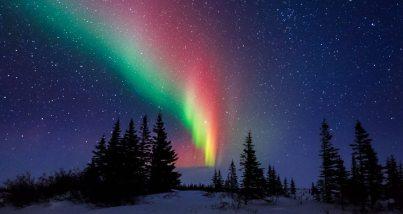 Aurora Over The Trees Of Churchill Manitoba