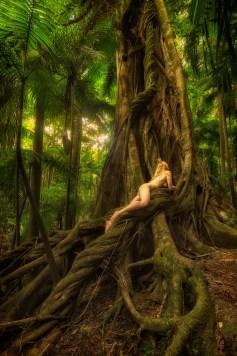 small-leaved-leopardess-treegirl-tkaweb
