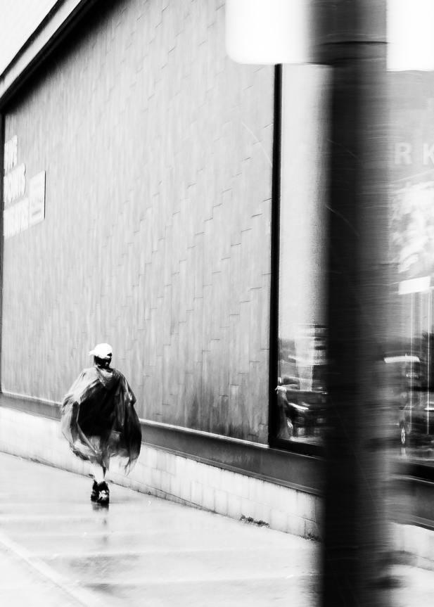 ©Gavin Steiner