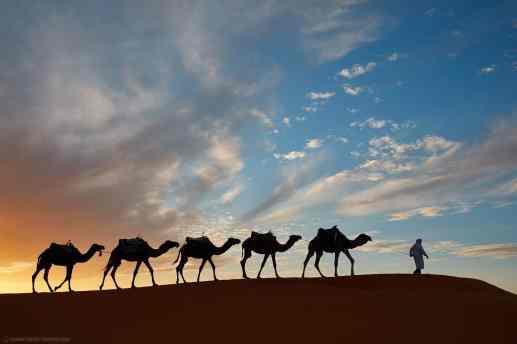 MBP_Morocco_20171105_5D17514-1440x960