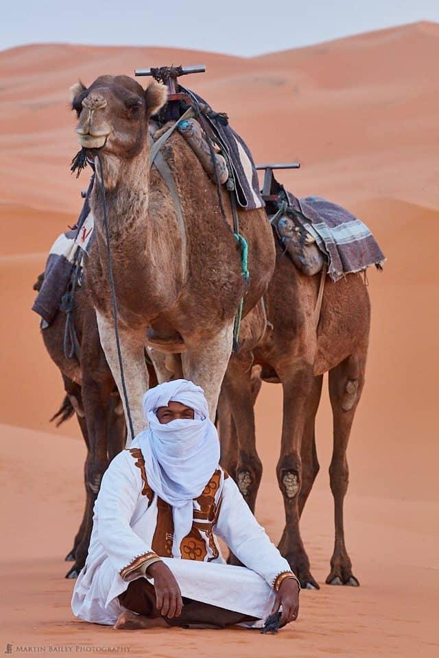 Camel Handler with Camels