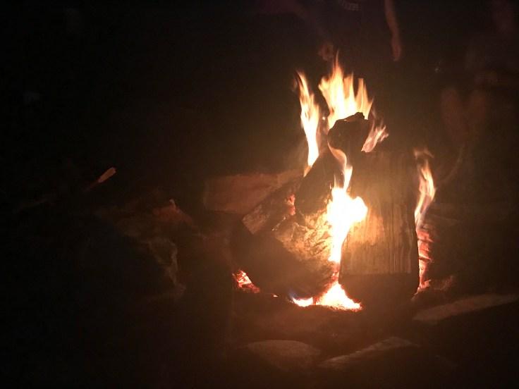 Vegan Campfire Chili thiswifecooks.com