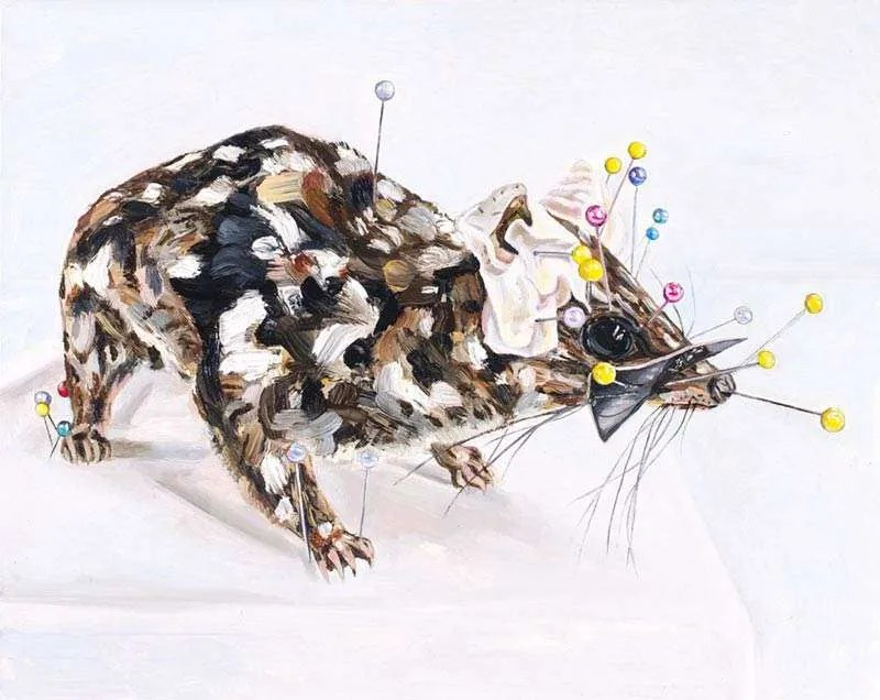 Emma Lindsay, Still Northern Quoll