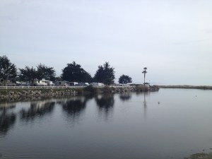 Our Pismo Beach campsite..and more Cali fog