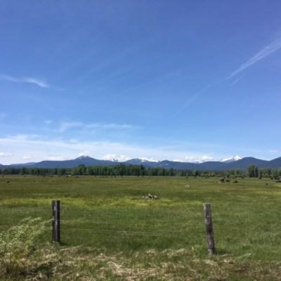 A dash of Oregon