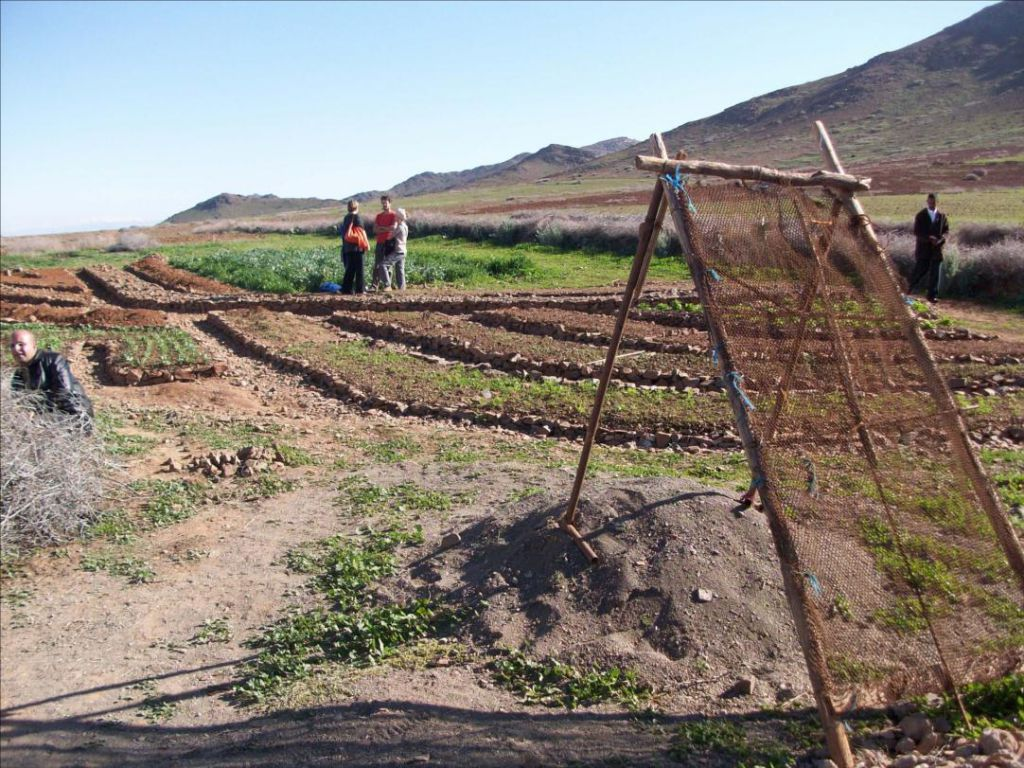 Jardin potager du CIPA