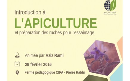 Formation : Introduction à l'apiculture THM