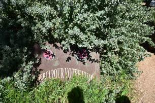 Jardin permaculture écologique Dar Bouazza