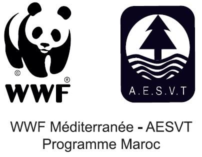 Atelier de formation WWF-AESVT