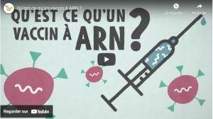 le principe des vaccins à ARN