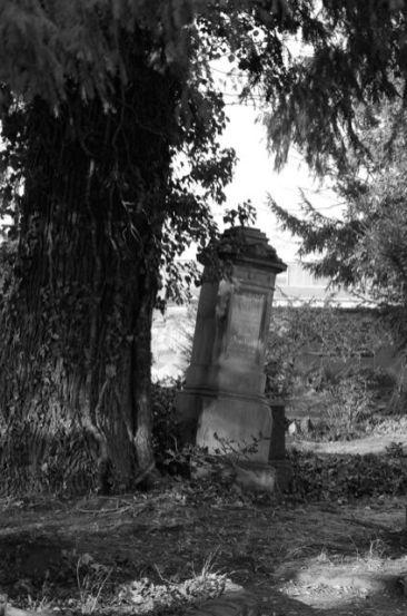 Alter Friedhof - Offenbach