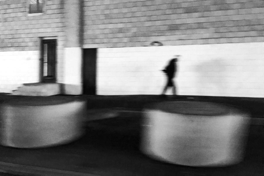 Snapseed_16