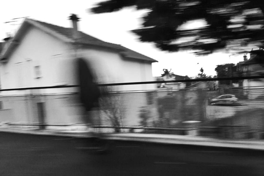 Snapseed_6
