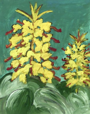 Azoren6-Gelbe Blueten