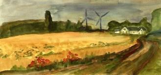 Daenemark9-Weizenfelder