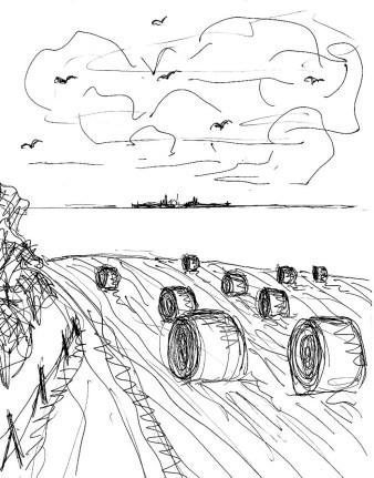 Picardie4-Felder bei Audighen2
